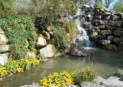 Planting Program for Hawkhurst Fish Farm waterfall